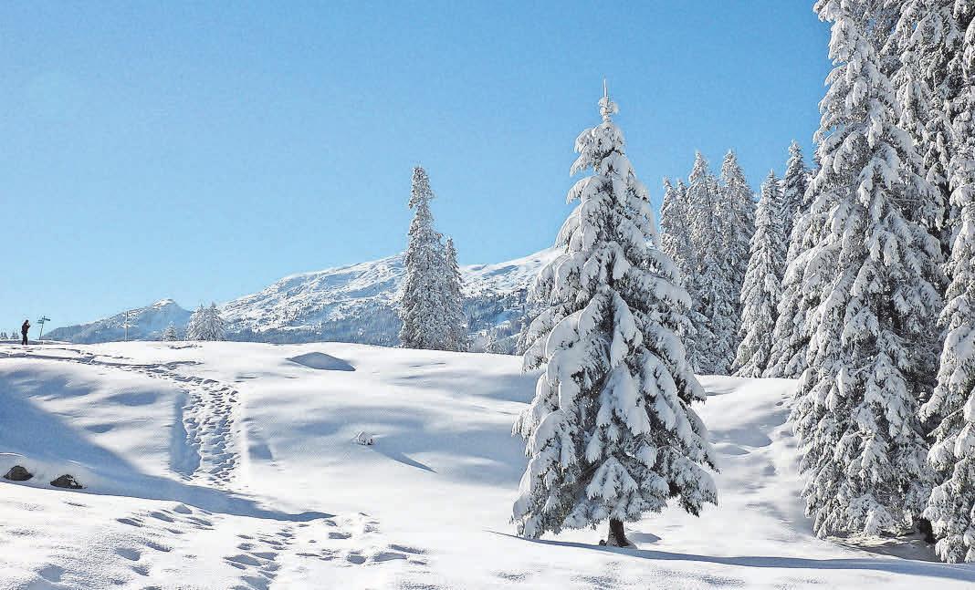 Schritte im Schnee sind ein Wohlklang für die Ohren. Foto: Pixabay