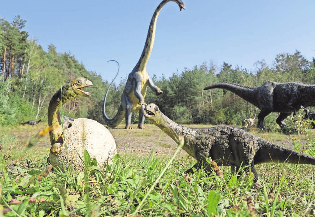 Zwei neugierige Diplodocus-Babys.
