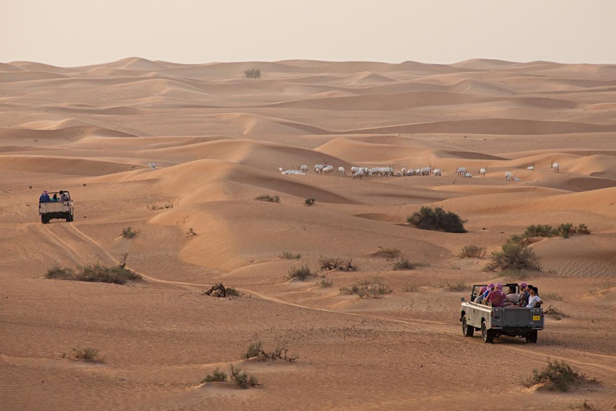 Dubai als faszinierendes Gruppenerlebnis Image 3