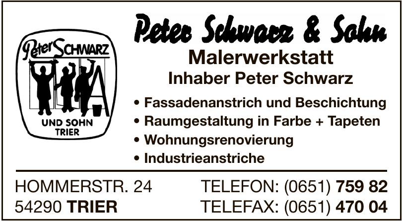 Peter Schwarz & Sohn Malerwerkstatt