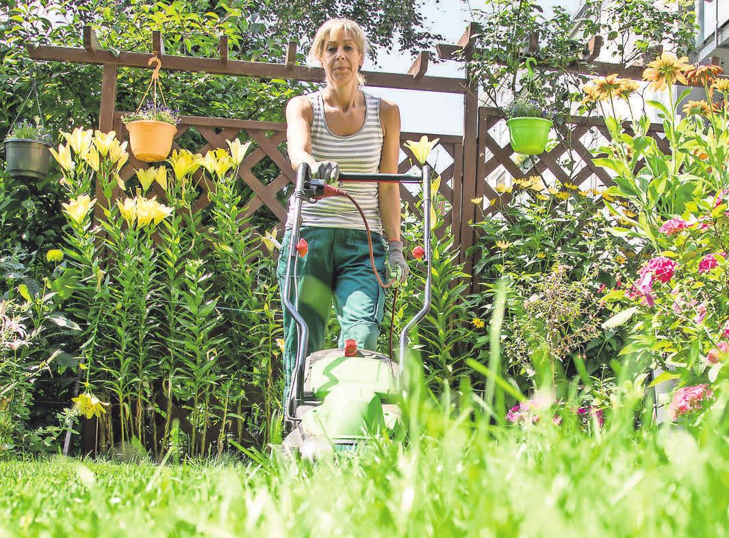 Freunde oder Nachbarn können bei einer längeren Abwesenheit der Hausbesitzer dafür sorgen, dass der Garten gepflegt wirkt.