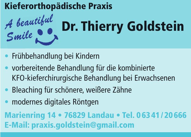 Dr. Thierry Goldstein