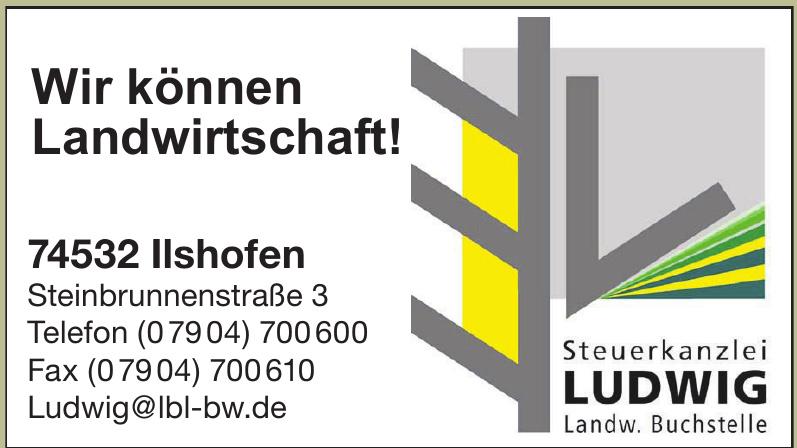 Steuerkanzlei Ludwig