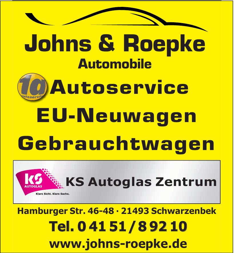 Johns& Roepke Automobile
