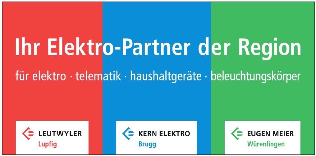 Ihr Elektro-Partner der Region