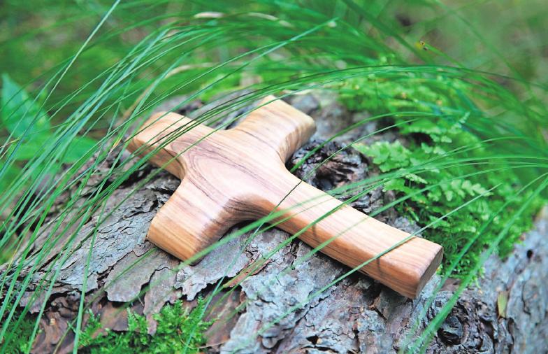 Eine Beisetzung im Wald ist für viele Menschen eine Alternative zum konventionellen Friedhof. Foto: as/Jeanette Dietl