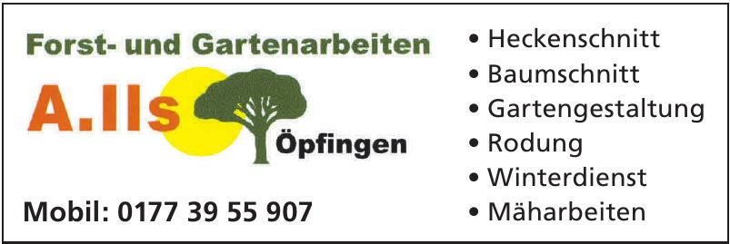 Forst- und Gartenarbeiten A. Ils