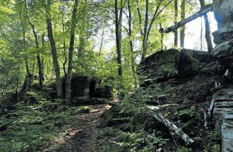 Mystische Pfade zwischen Mauerresten: Heidelsburg