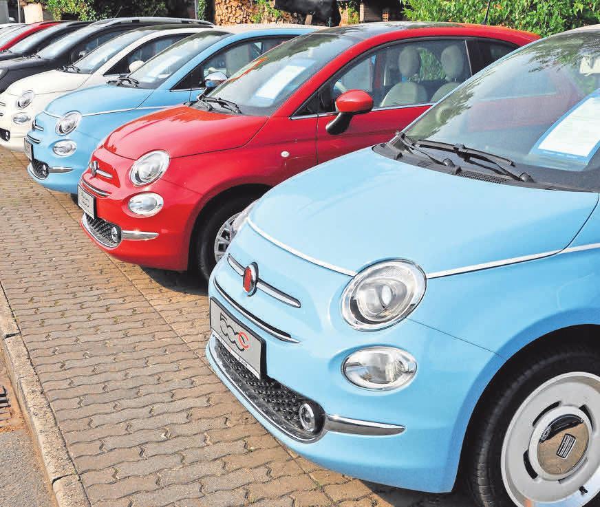 Die Auswahl im Autohaus Blank ist groß.
