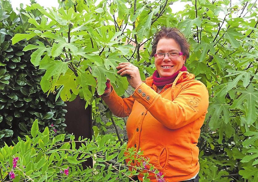 Agnes Linnea Weisheit: Gartenpflege. ARCHIVFOTO: HORTUS LINNEA