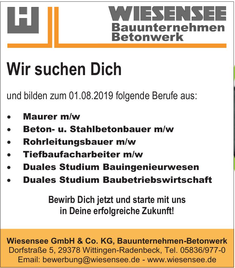 Wiesensee GmbH & Co. KG, Bauunternehmen-Betonwerk