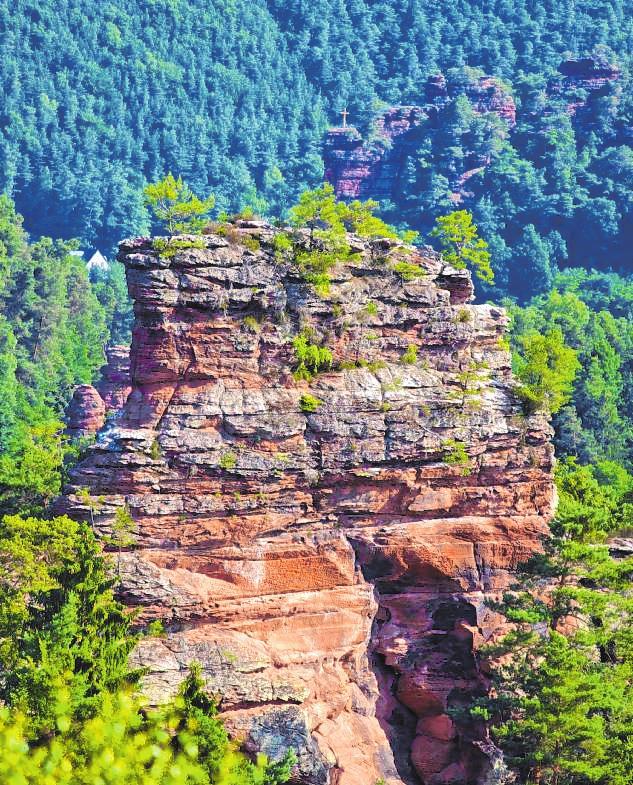 Über eine Leiter gelangt man ins Herz des Büttelfelsen, von wo aus man eine tolle Aussicht auf Dahn genießt. KURT GROSS