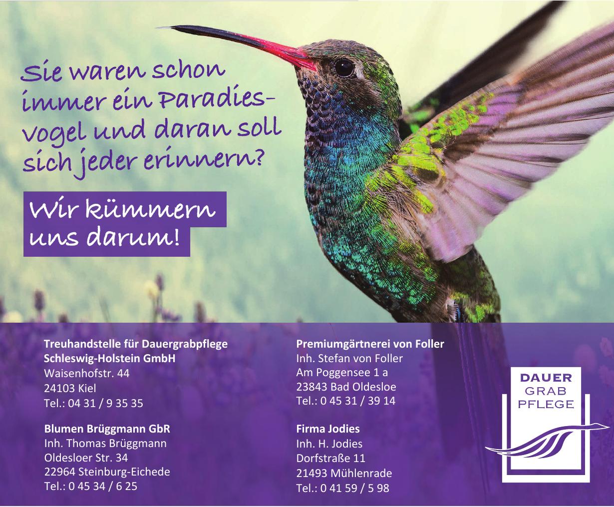 Treuhandstelle für Dauergrabpflege Schleswig-Holstein GmbH