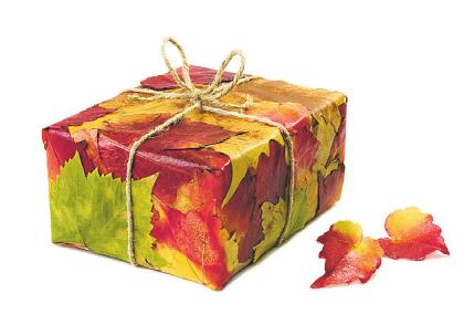 Recyclebares Papier eignet sich auch als Verpackung Bild: philidor/stock.adobe.com