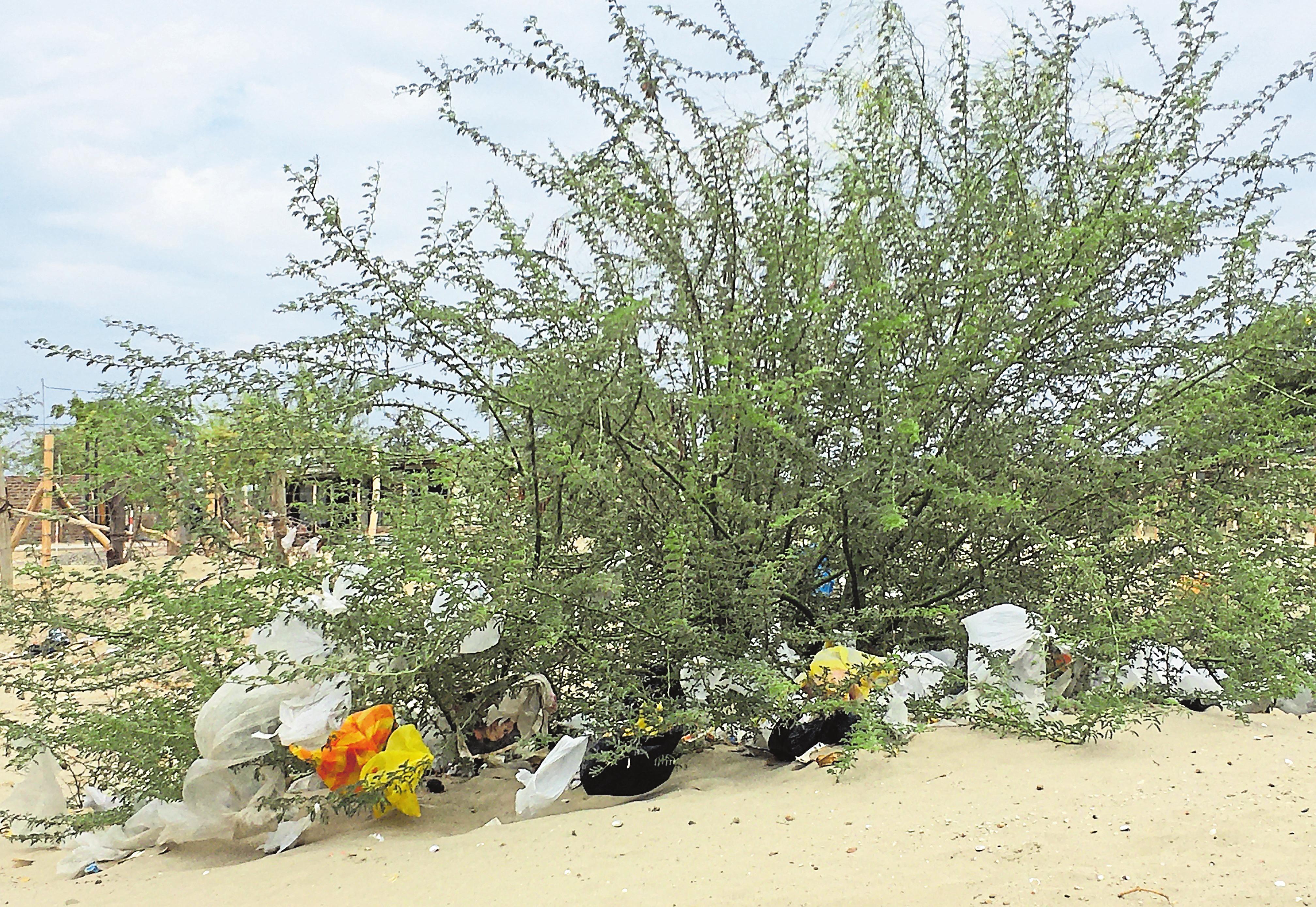 Le projet de recyclage cofinancé par Cactus permet de débarrasser la nature des sacs en plastique. Photos: Cactu