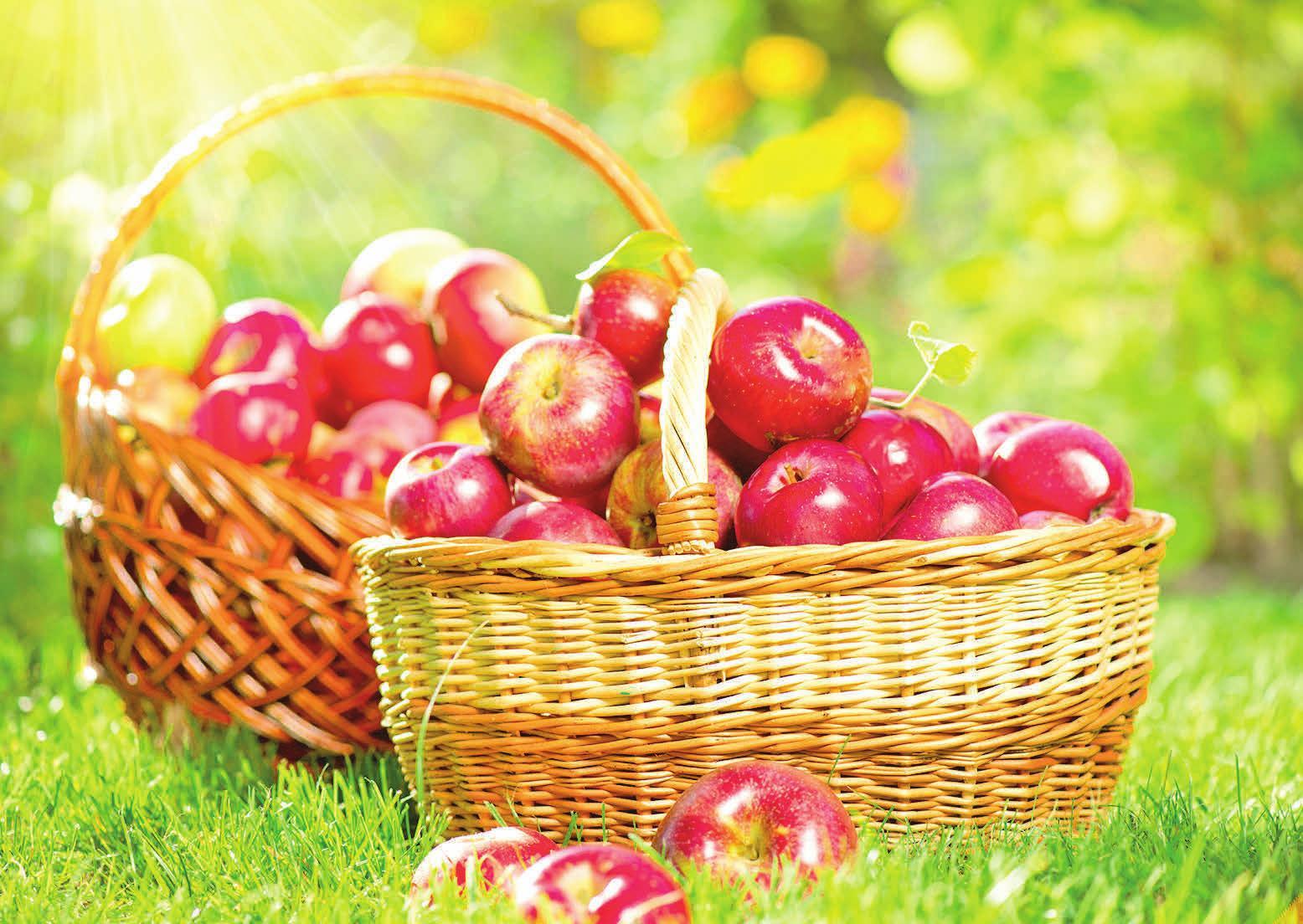 Passend zur Saison gibt es leckeren heißen Apfelsaft für die Besucher. Foto: Subbotina/123RF