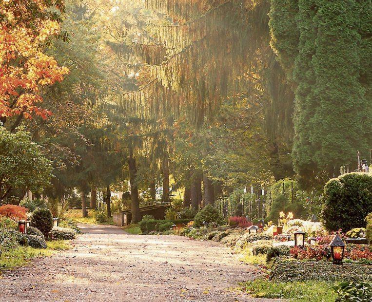 Bild: ©stockpics - stock.adobe.com