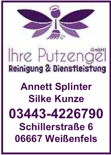 Ihr Putzengel GmbH