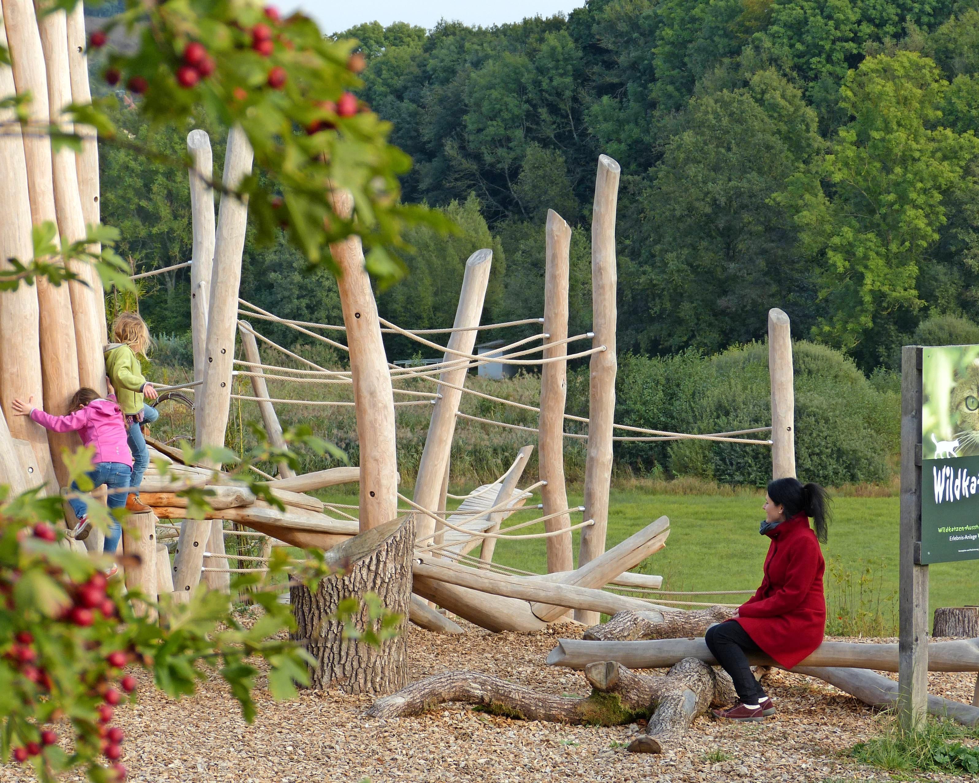 Viel Spaß haben Wanderer in der Erlebnisanlage Wildkatzenweld im Naturpark<div>Stromberg-Heuchelberg. Fotos: Jan Bürgermeister</div>