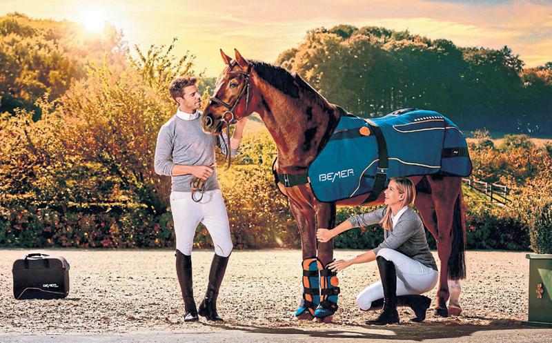 Mehr Gesundheit und Wohlbefinden für Mensch und Pferd Image 2