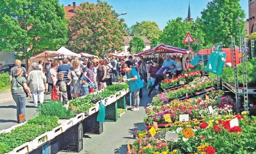 Der Frühjahrsmarkt im letzten Jahr erfreute sich größter Resonanz.