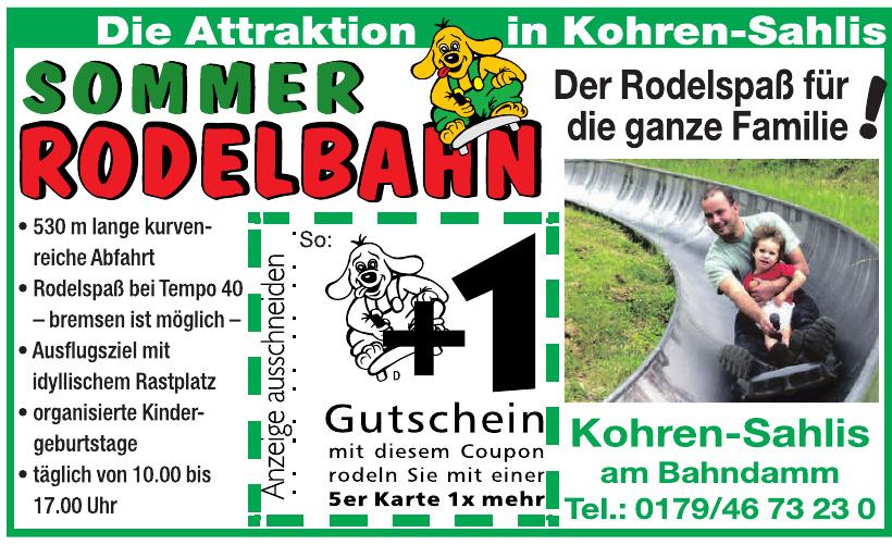 Sommer Rodelbahn