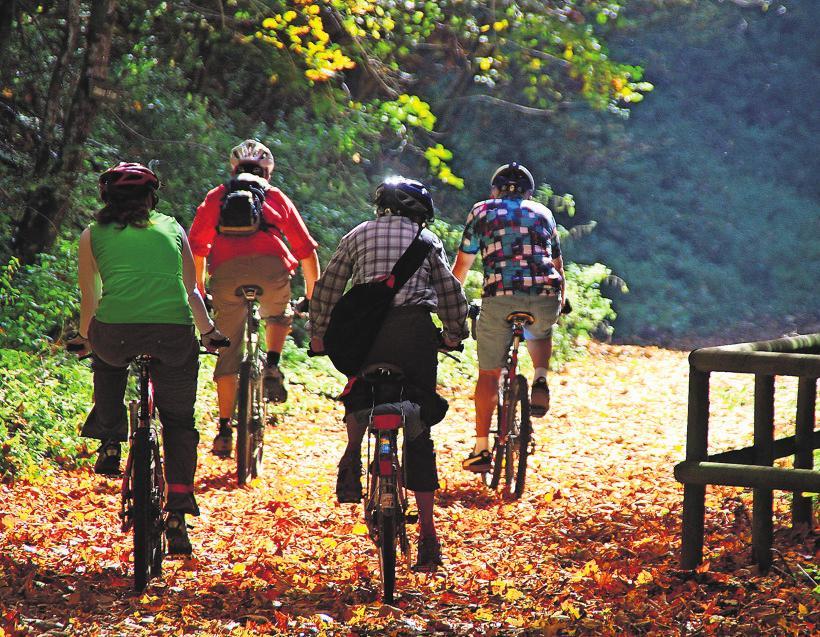 Radfahren ist familientauglich und bis in den Herbst hinein möglich. Foto: z/Albrecht E. Arnold/pixelio.de