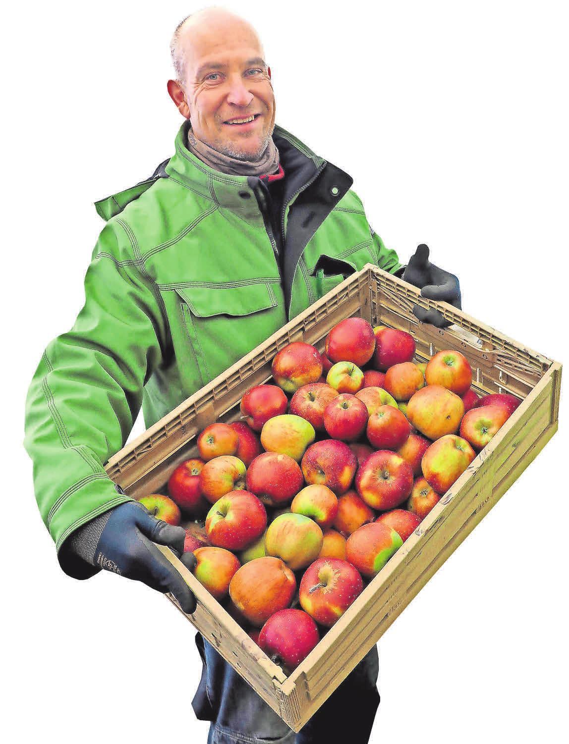 Im Hofladen des Werderaner Obstbauern Stefan Lindicke gibt es eine große Auswahl an Äpfeln. Foto: Brigitta Sonntag