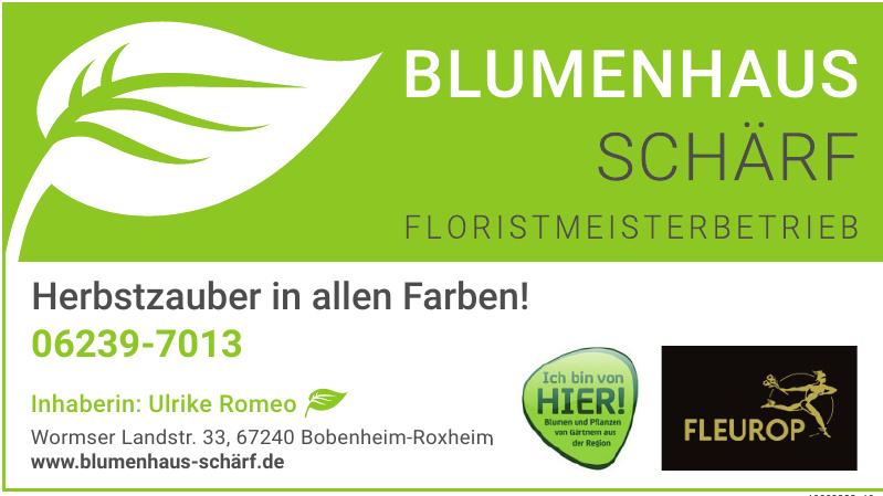 Blumenhaus Schärf