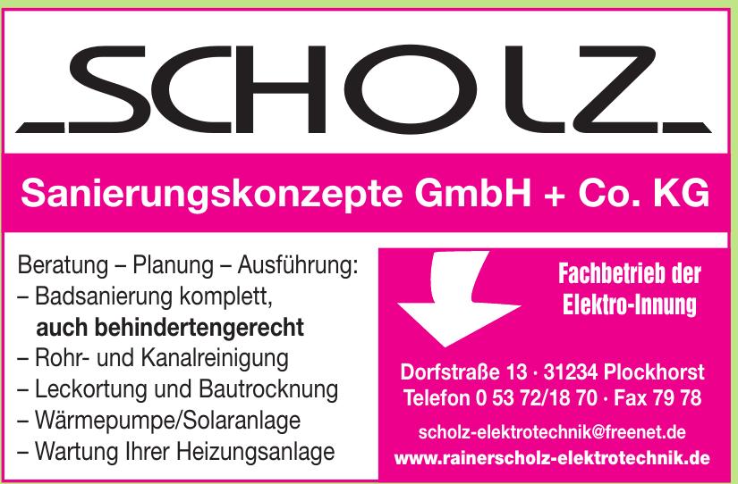 Scholz Sanierungskonzepte GmbH + Co. KG