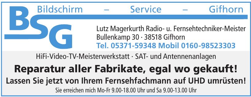 BSG Lutz Magerkurth Radio- u. Fernsehtechniker-Meister