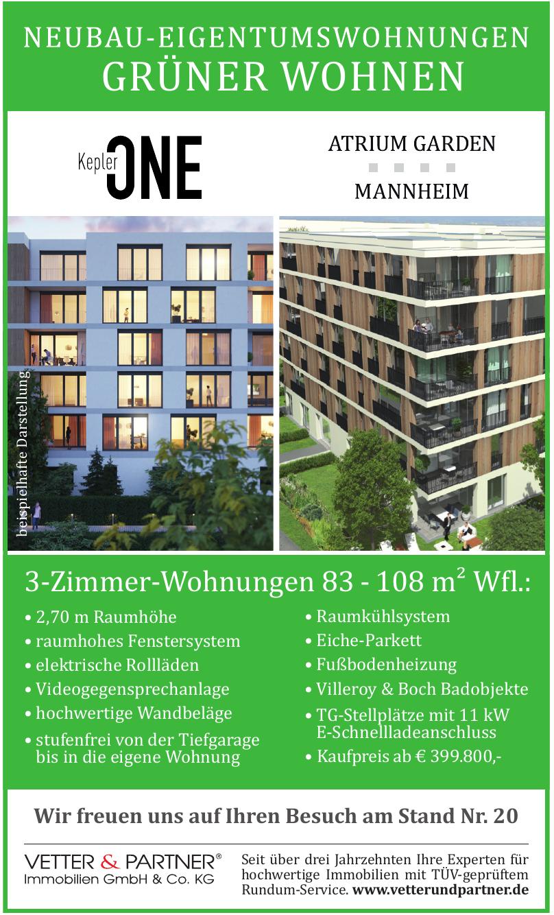 VETTER & PARTNER Immobilien GmbH & Co. KG