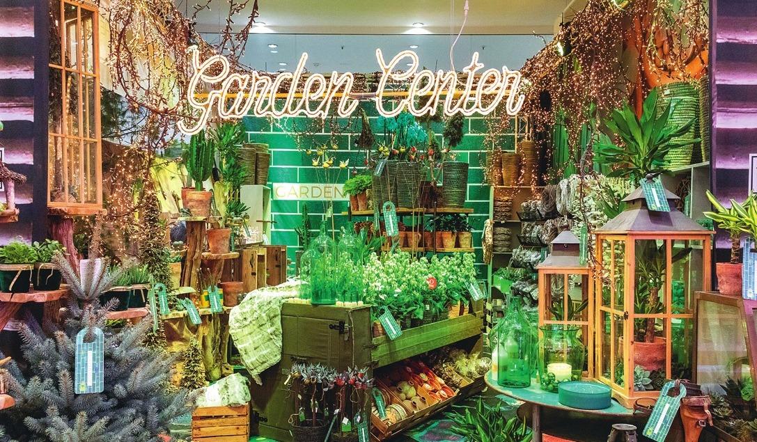 Flächige Präsentation von botanischen Kalanchoe im Gartencenter-Store.