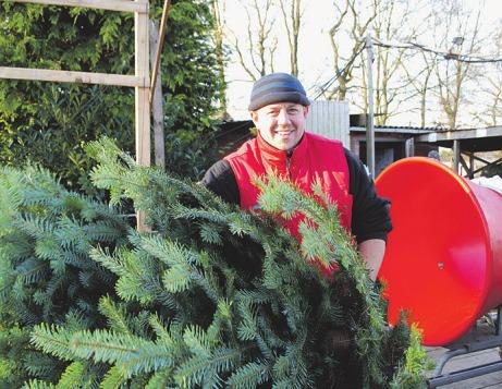 Der Weihnachtsbaumverkauf bei Mike Bolhuis startet am 1. Dezember Foto: Tina Jordan
