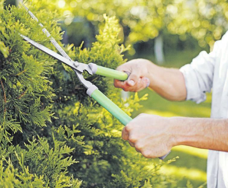 02 Für viele Menschen gilt Gartenarbeit als höchst entspannend. Sie macht Freude – und hält gleichzeitig fit. Foto: freepik
