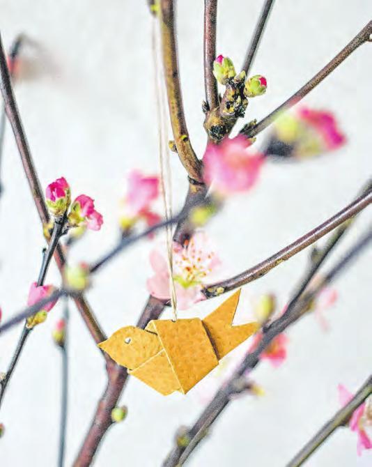 So kommt der Frühling in die Stube Image 3