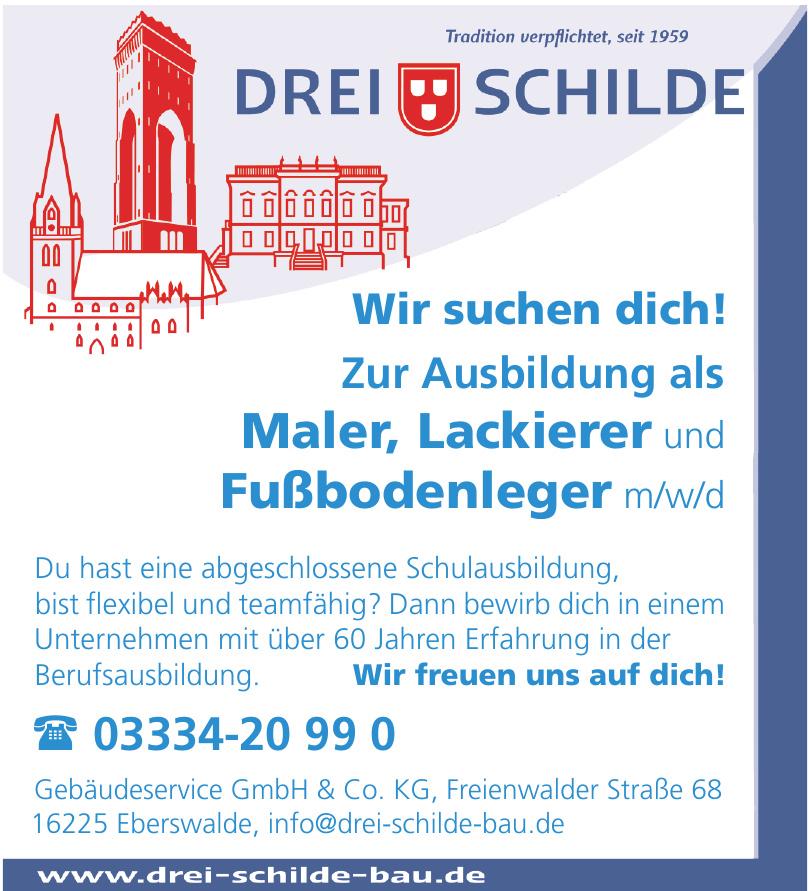 Drei Schilde Gebäudeservice GmbH & CO. KG