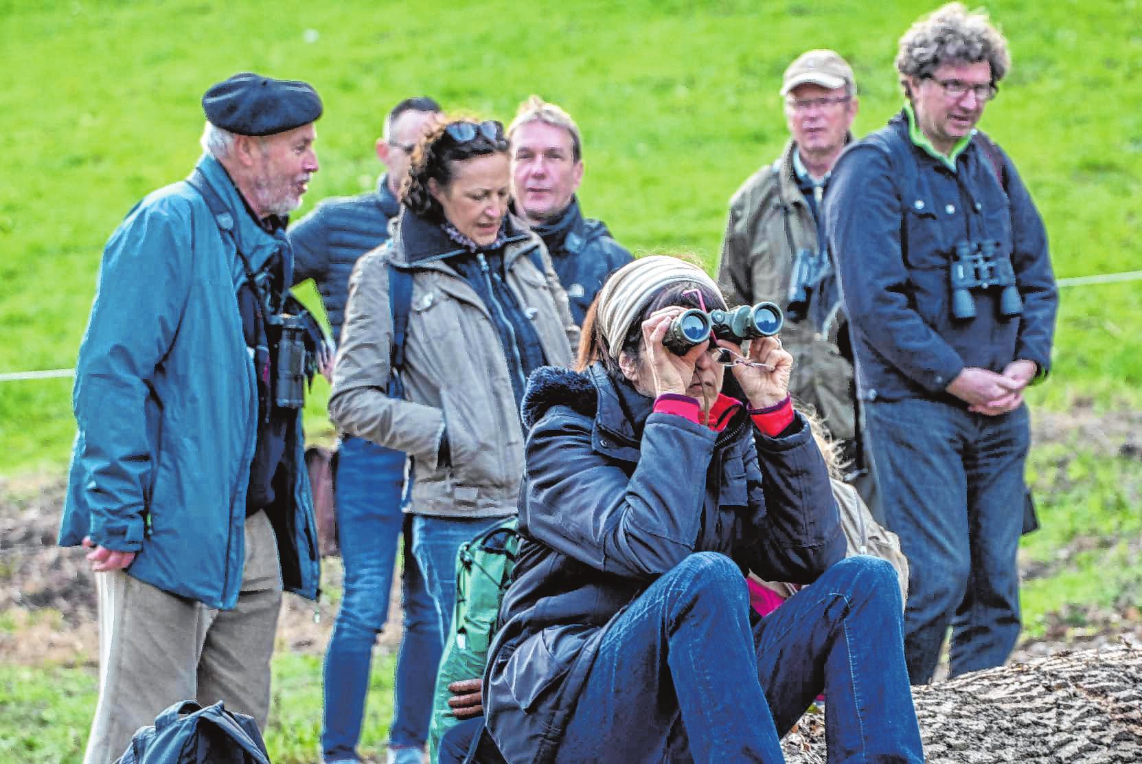 Stephan Schäfer (l.), Vorsitzender des Nabu Bensheim/Zwingenberg, führte die Vogelwanderung in Wilmshausen. Bild: Thomas Neu