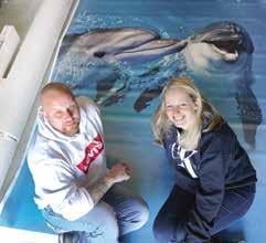 MALERMEISTER Christian Richter und Lebensgefährtin Bettina Irmler sitzen in der Werkstatt vor einem 3D-Fußboden mit Delfinen als Motiv. Foto: Richter und Klemmer