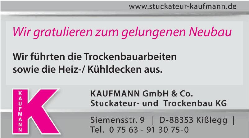 KAUFMANN GmbH & Co. Stuckateur- und Trockenbau KG