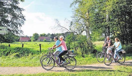 Eine ausgezeichnete Radfahrregion. Foto: Bad Bevensen Marketing GmbH