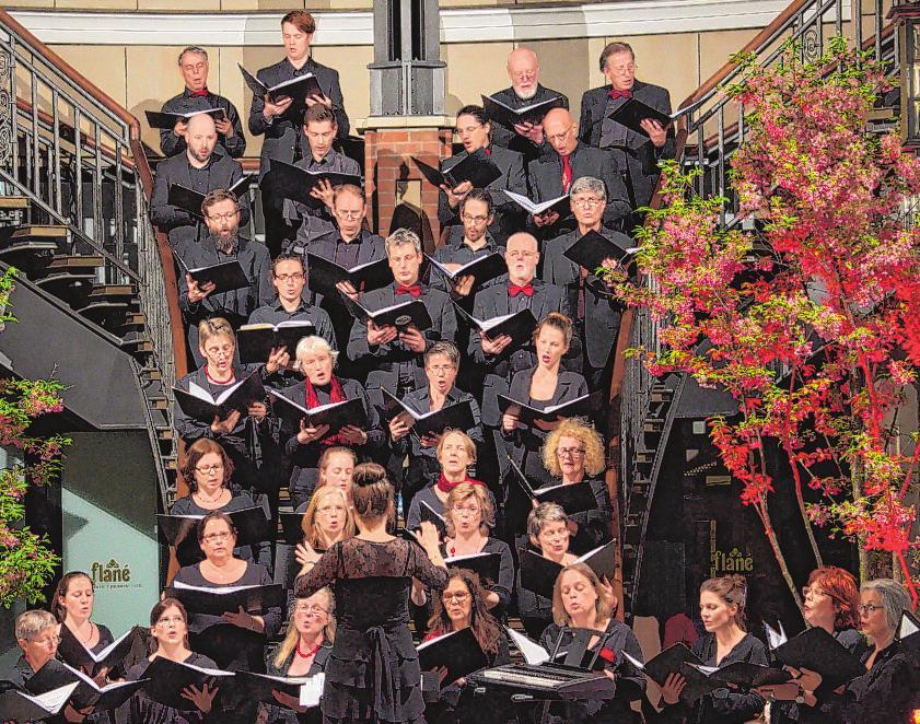 Der Kodály-Chor 2017 bei einem Auftritt im Hamburger Levantehaus Foto:Kodály-Chor