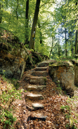 Reste des römischen Forstamts: ausgewaschene Stufen. | Foto: Harald Hartusch/frei
