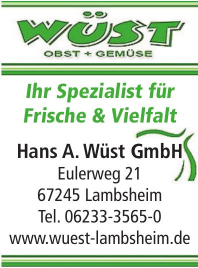 Hans A. Wüst GmbH