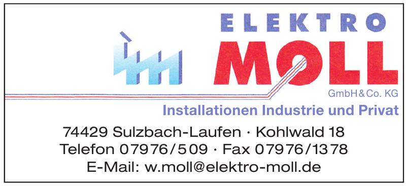 Elektro Moll GmbH & Co. KG