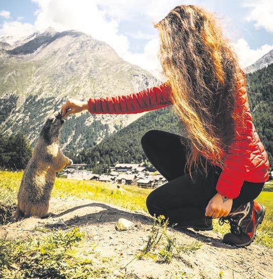 © Saastal Tourismus AG/Puzzle Media