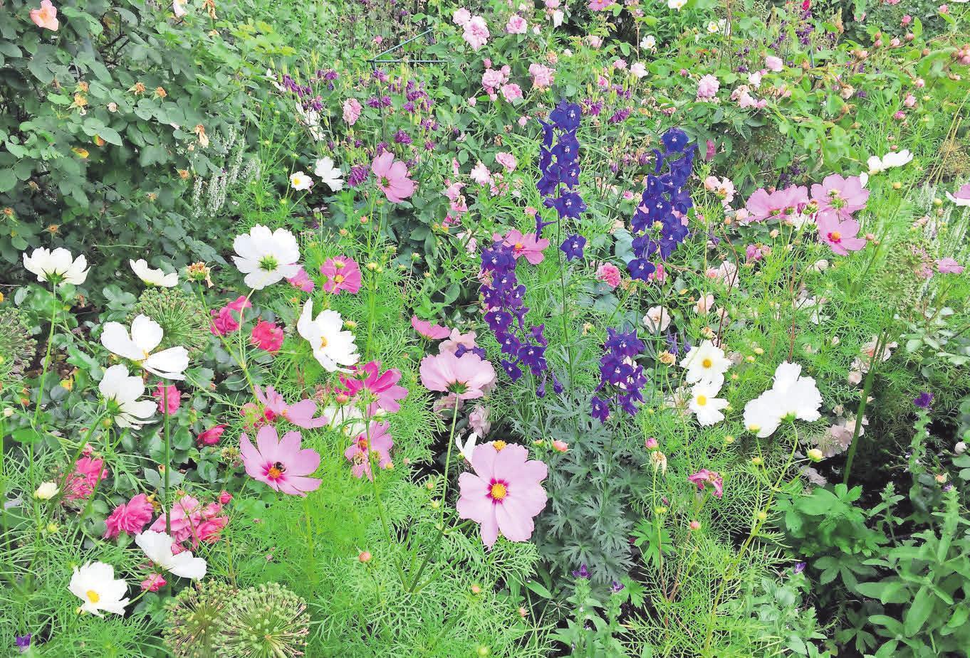 In romantischen Gärten stehen Blumen im Vordergrund.