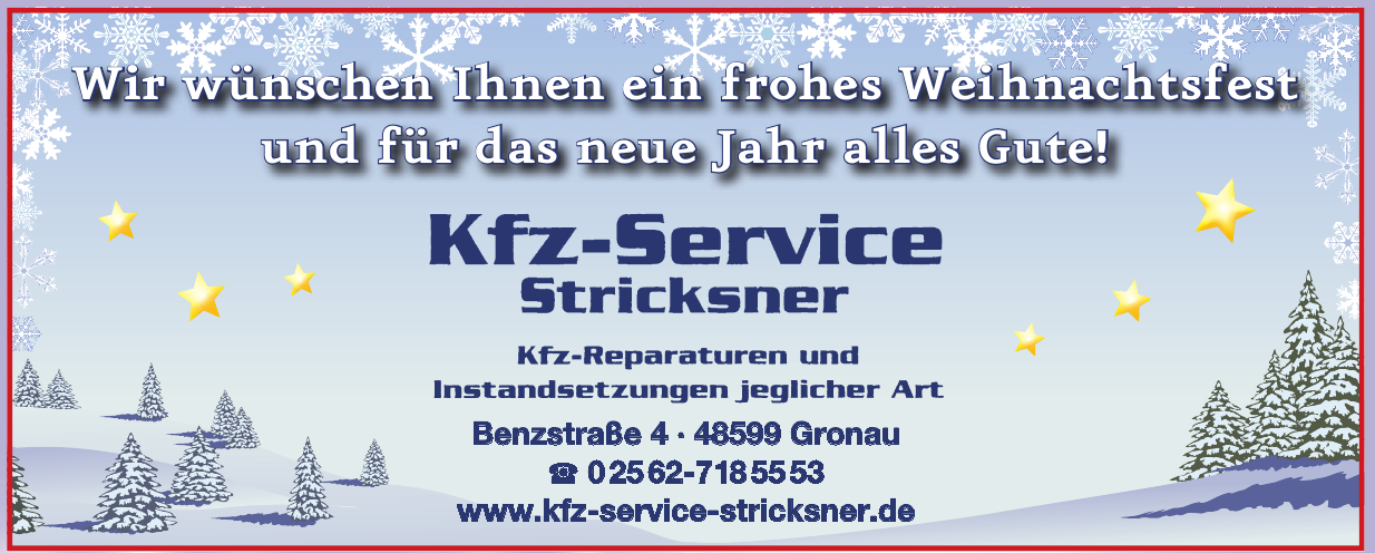 Kfz-Service Stricksner