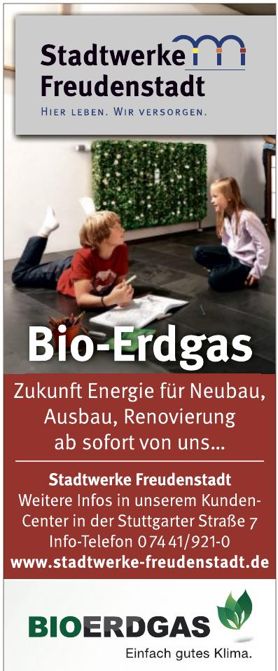 Stadtwerke Freudenstadt GmbH & Co. KG