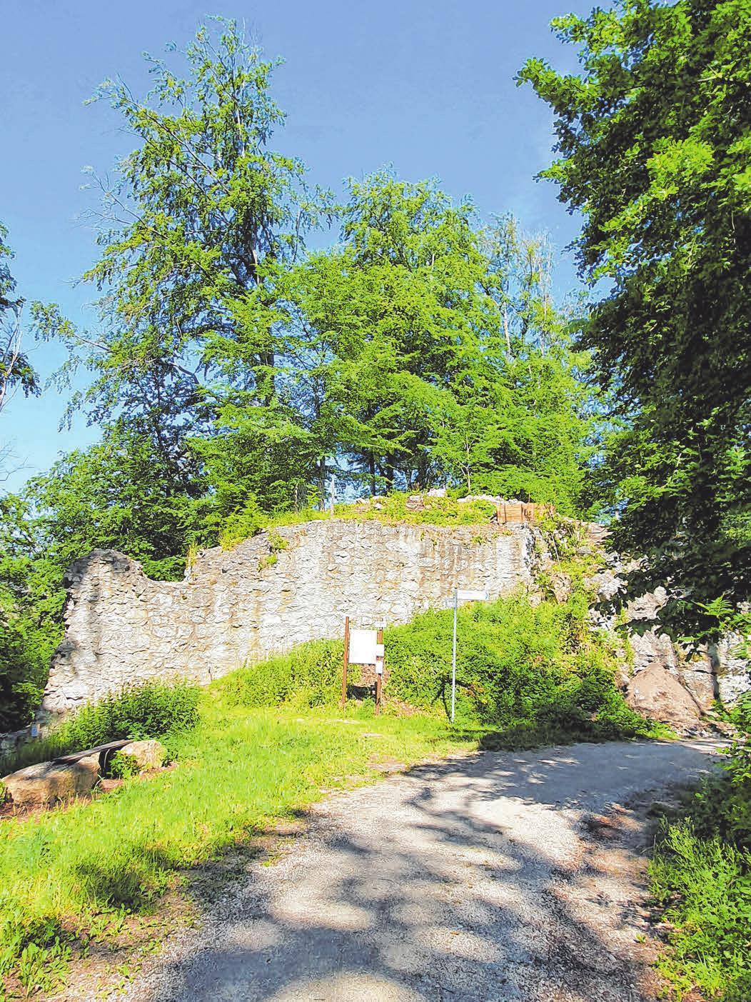 Die Kocherburg ist die Ruine einer Höhenburg in Unterkochen.
